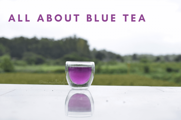 All About Blue Pea Tea