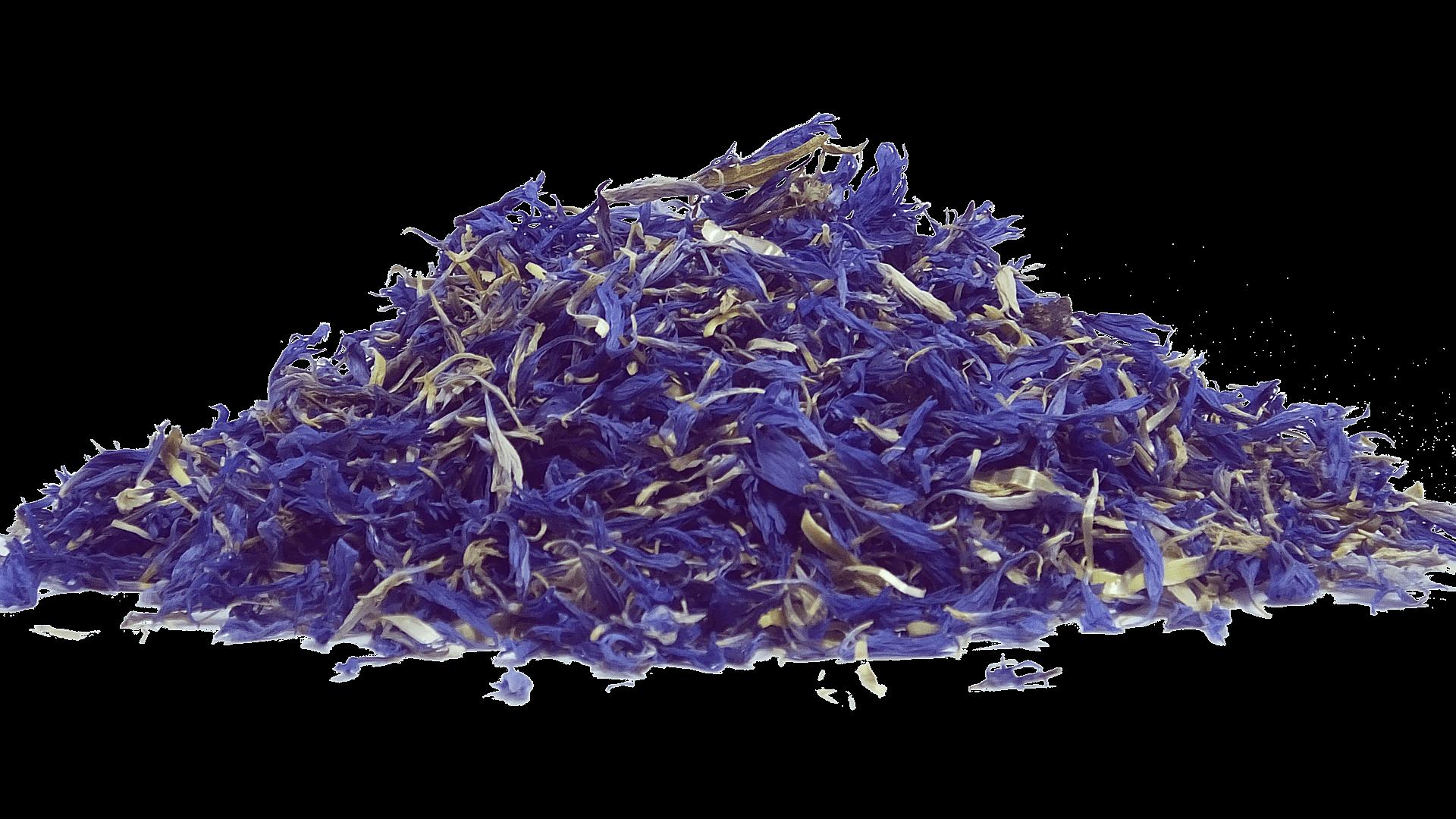 dried blue tea flower